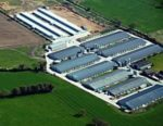 1112PIbroil1.jpg UK-poultry-farm