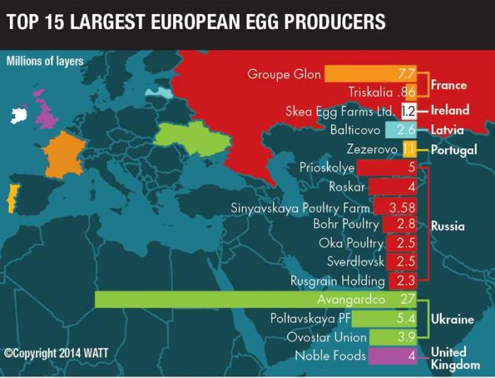 Who Are The World S Largest Egg Producers