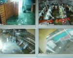 video-monitoring-1506PIpoultryprocessing1.jpg