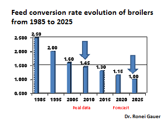 The future of poultry nutrition: 1:1 feed conversions by 2025?