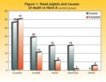 Piglet-mortality-causes-1211PIGsowhealth1