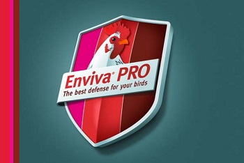 Enviva Chicken logo