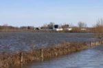flooded-corn-field-1304FMmidwestflood