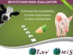 risk-evaluator-1303PIGnews
