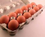 Dozen-brown-eggs-Andrea.jpg