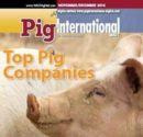 pig-top-companies1411PIGmagcover.JPG