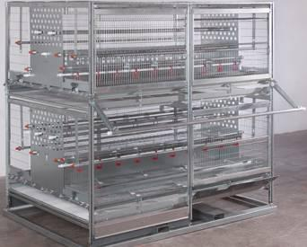 Farmer Automatic COMBI PULLET rearing system