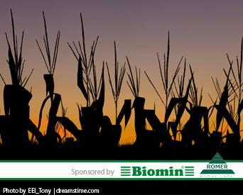1311Biomin_webinar_lightbox